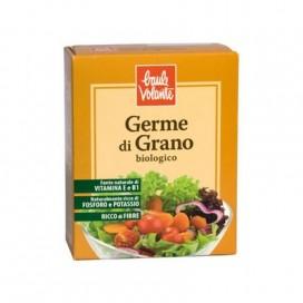 Germe_grano_BV