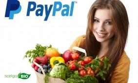 Da oggi un servizio in più: PayPal!