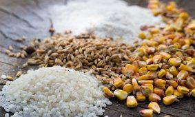 Sostituire la farina 00: 15 alternative con e senza glutine
